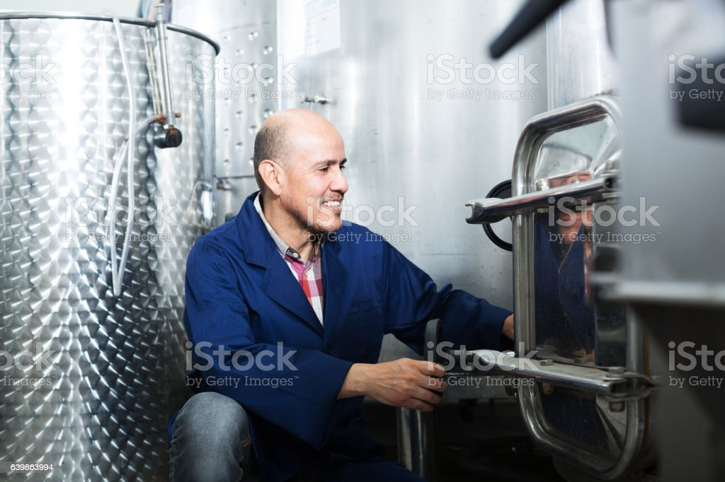 Mature worker in winery stock photo