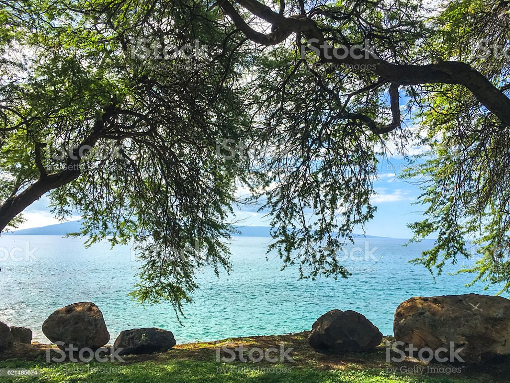 Strand von Maui, Hawaii, VEREINIGTE STAATEN Lizenzfreies stock-foto