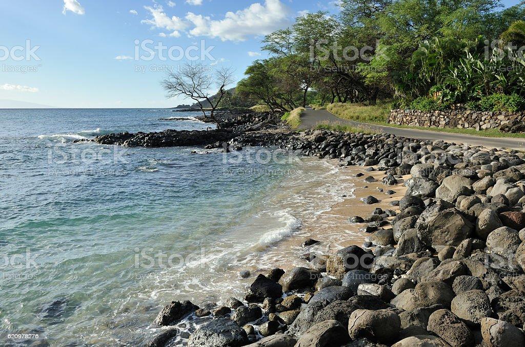 Maui coastline and scenic road foto royalty-free