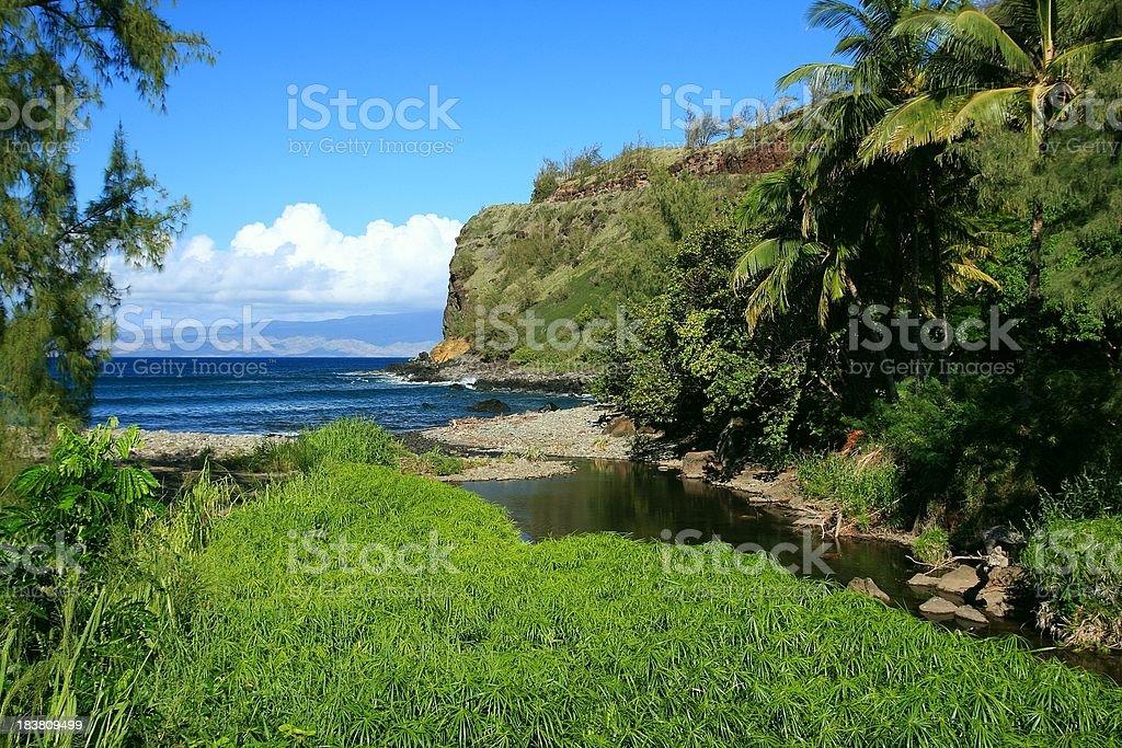 Maui Hawaii beach Pacific ocean palm tree bay scenic royalty-free stock photo