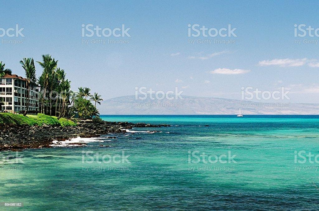 Maui, hotel alle Hawaii e snorkeling cove foto stock royalty-free