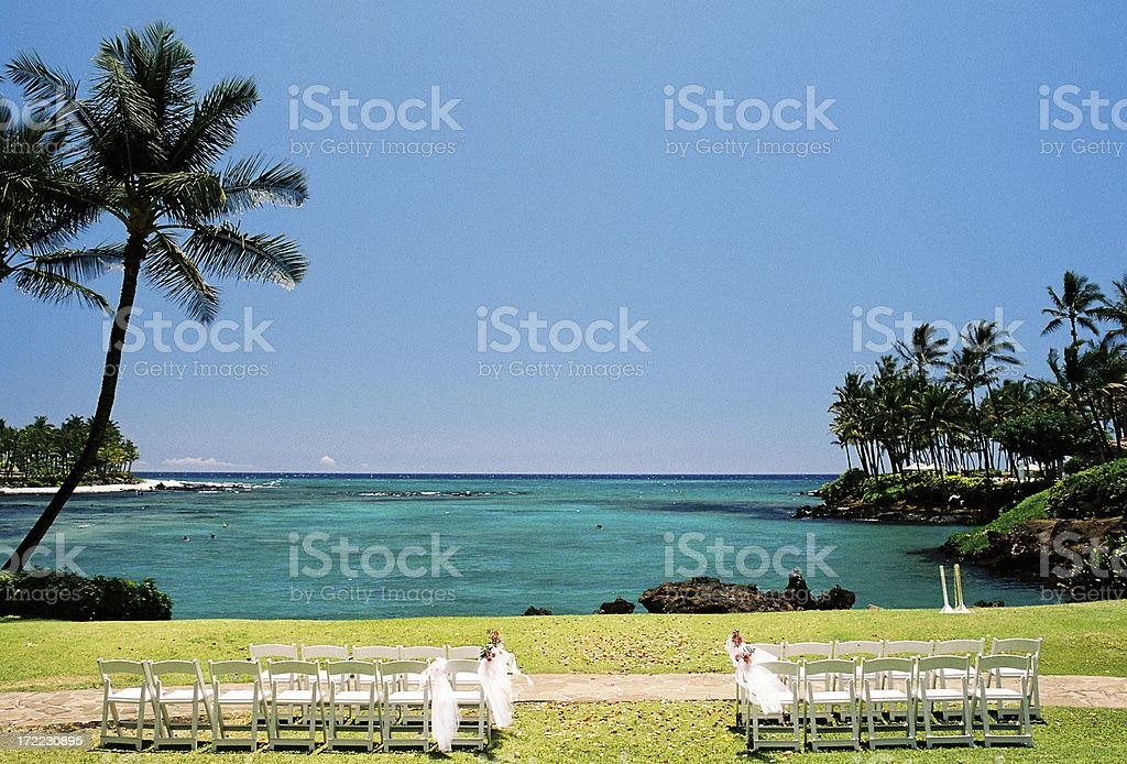 Maui Hawaii Pacific ocean front palm tree wedding spot stock photo