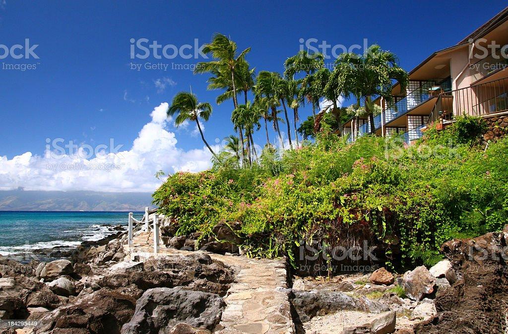 Maui Hawaii Pacific ocean palm tree resort hotel scene stock photo