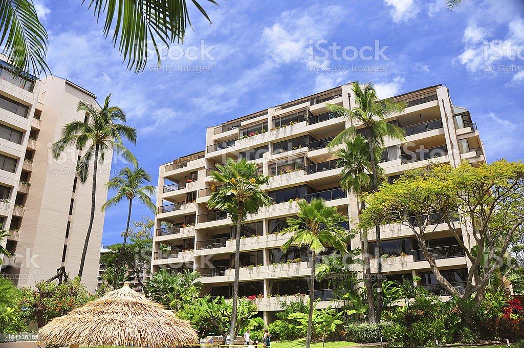 Maui Hawaii Pacific ocean resort hotel and palm trees stock photo