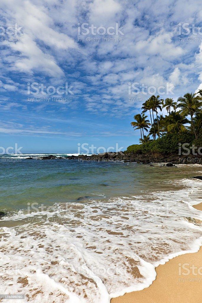 maui, hawaii royalty-free stock photo