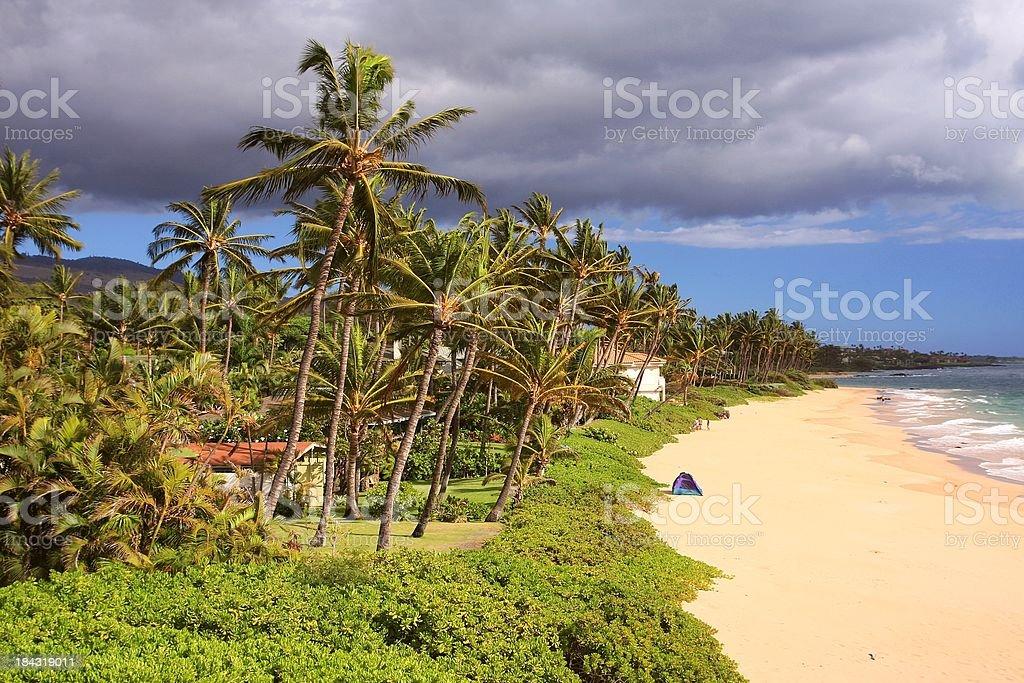 Maui Hawaii resort home palm tree beach scene stock photo