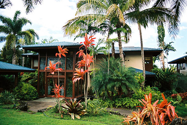 maui hawaii tropical mansion and palm tree garden - hawaii home stock photos and pictures
