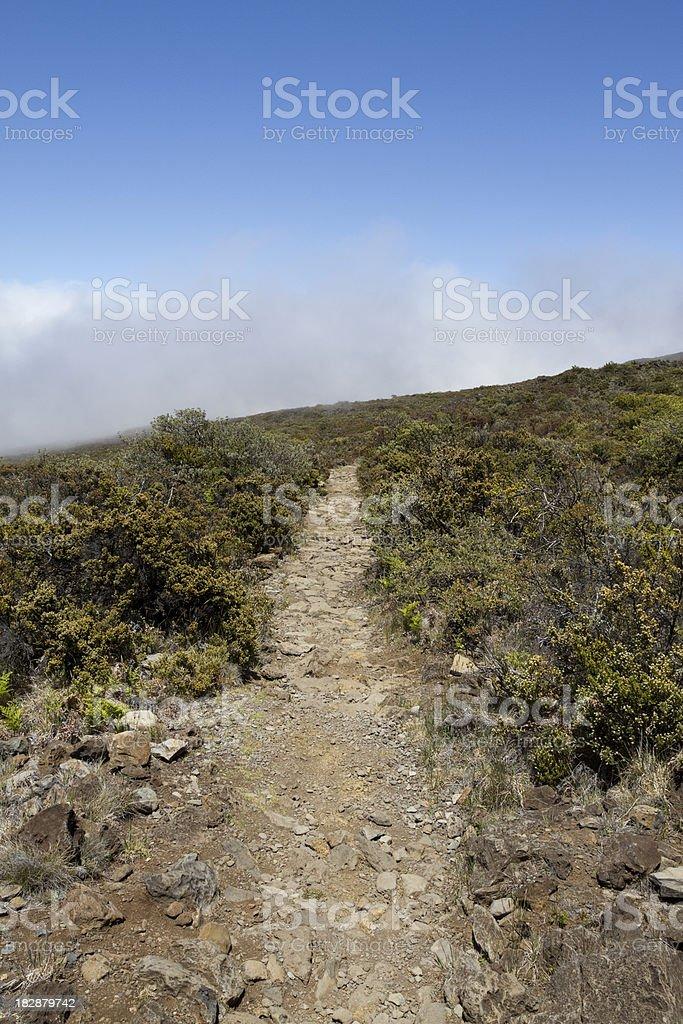 Maui Island Hiking Trail royalty-free stock photo