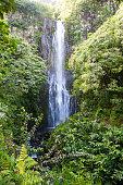 The stunning landscape of Maui, Hawaii