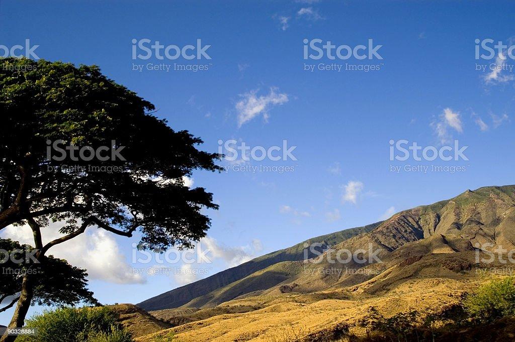 Maui Landscape stock photo