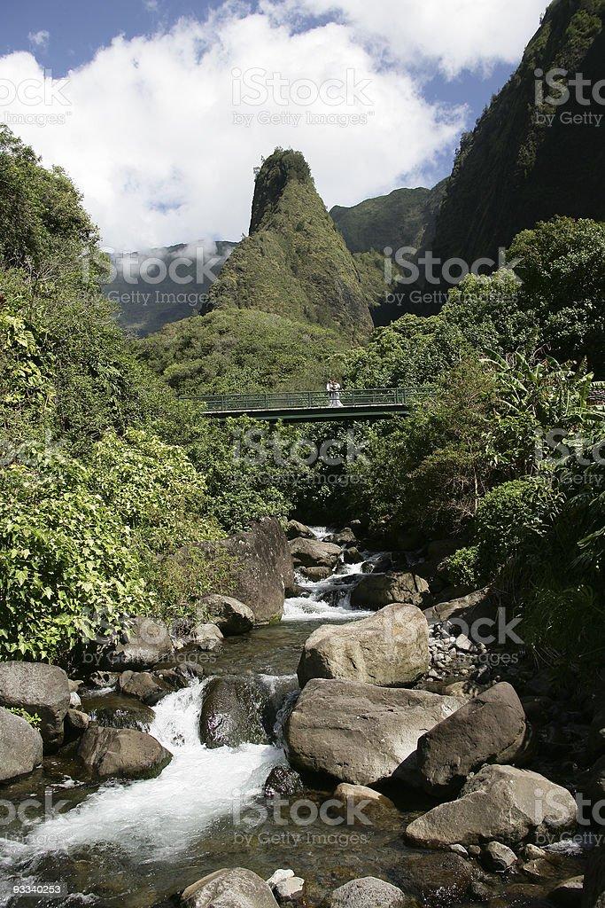 Maui Magic stock photo