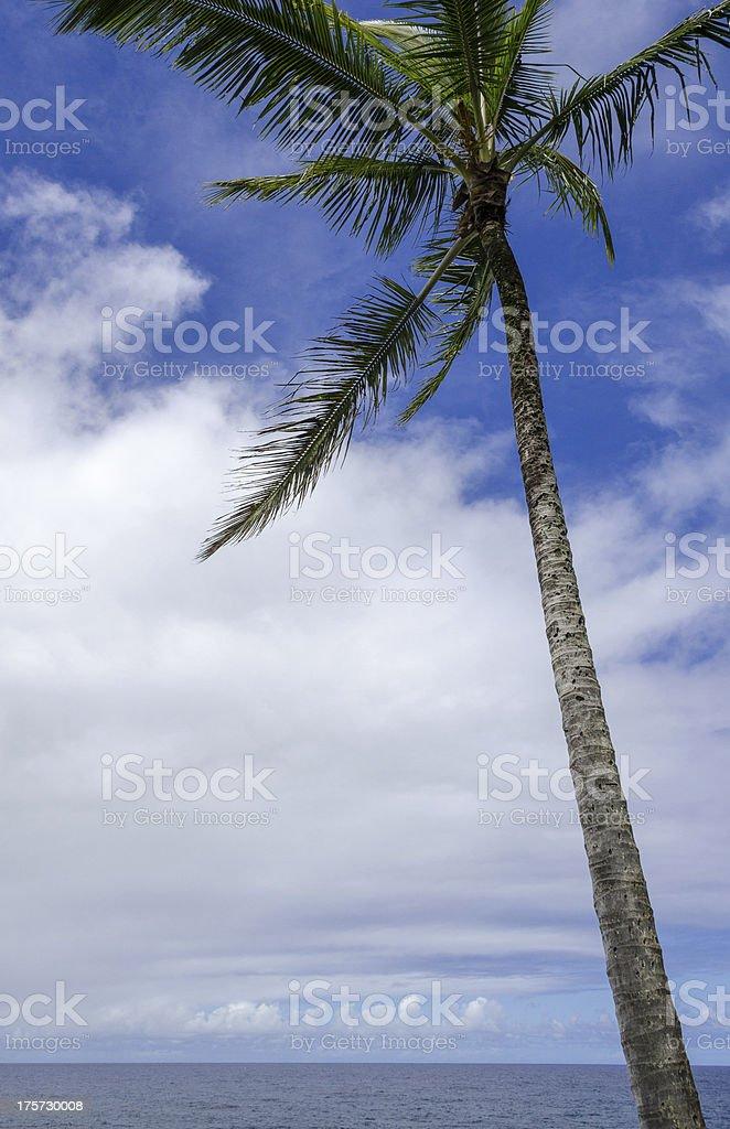 Maui royalty-free stock photo