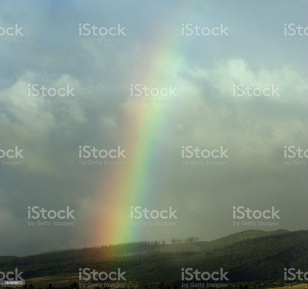 Maui Rainbow royalty-free stock photo