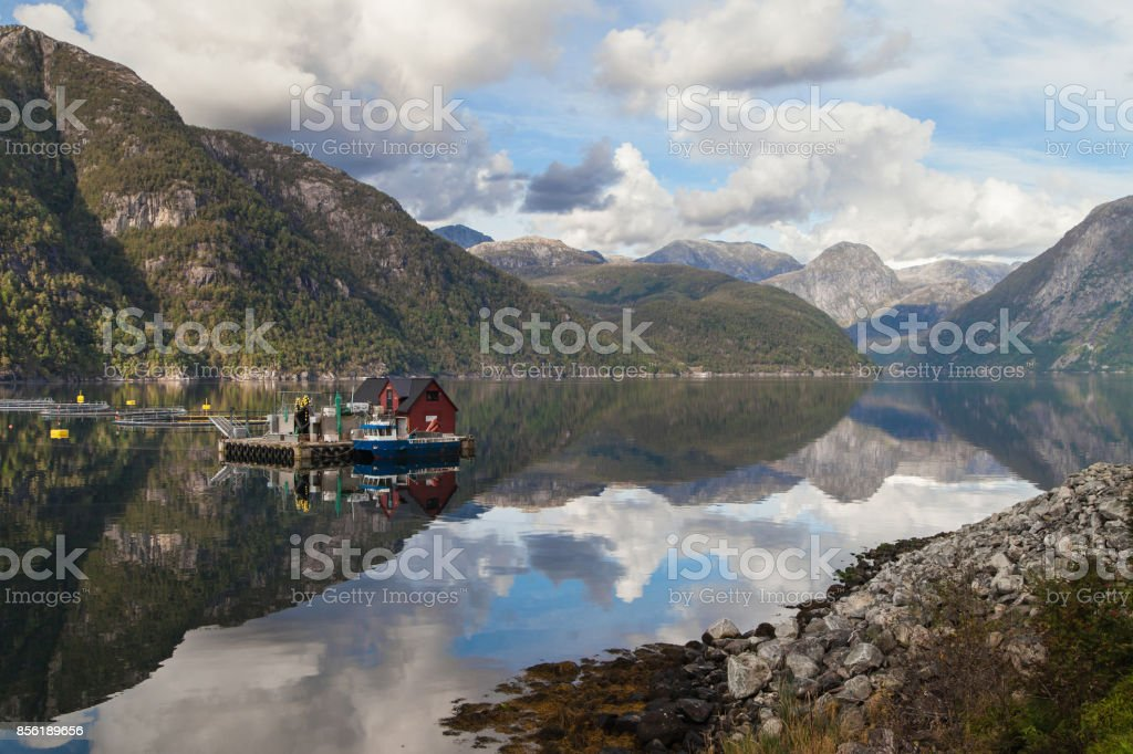Mauranger Fjord stock photo