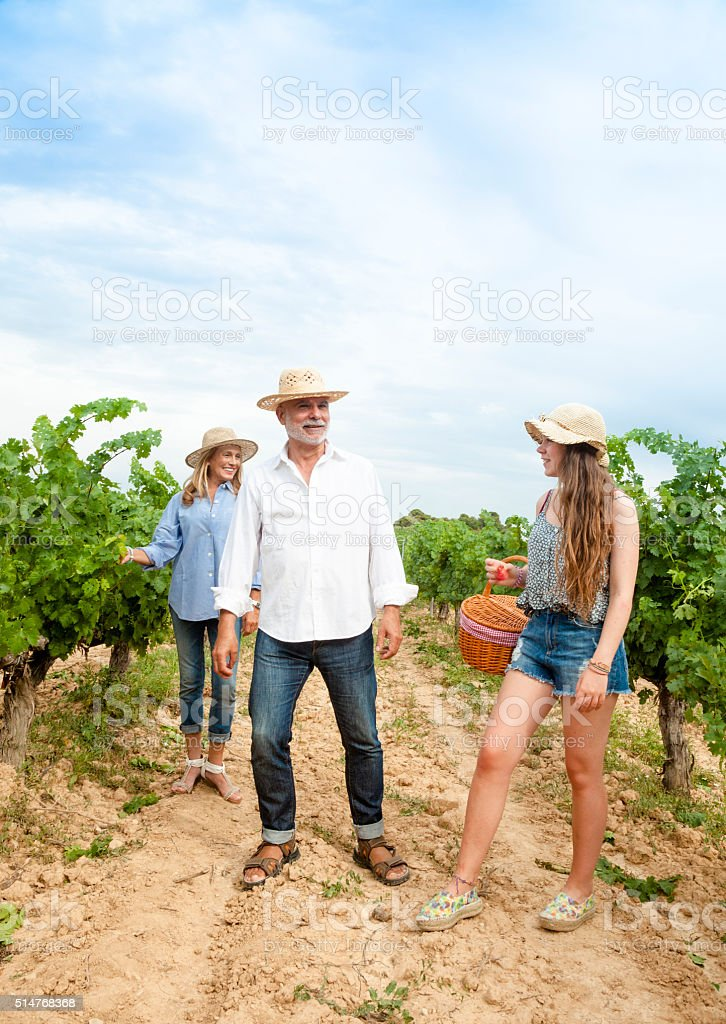 Maure couple and teene harvesting grapes stock photo