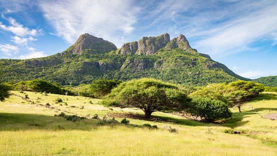 Panorama view to Montagne du Rempart - Mount Rempart Peak with green grassland and tropical trees in the foreground under blue sky. Casela, Riviere du Rempart, Montagne du Rempart, Mauritius, East Africa