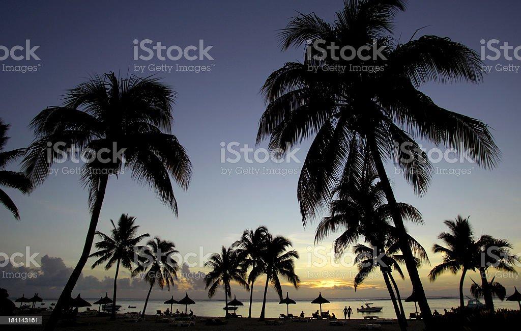 Mauritius Silhouettes stock photo
