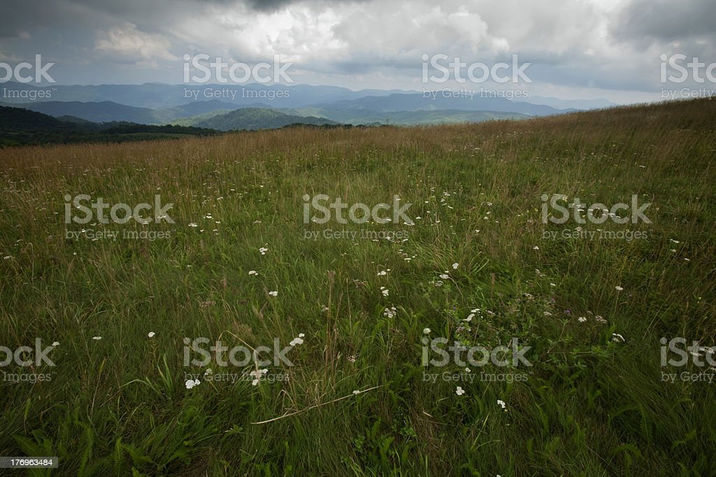 Max Patch, Appalachian Trail, Pisgah Nat. Forest stock photo