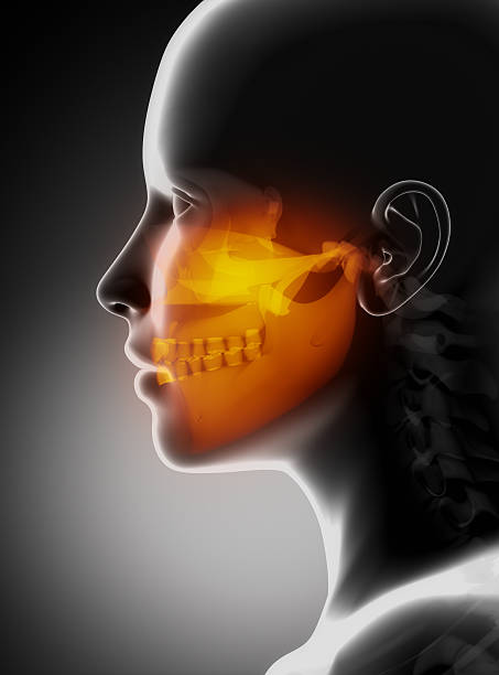 maxillofacial concept x-ray jaws - janulla stock pictures, royalty-free photos & images