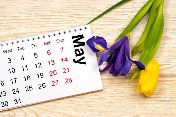 may 2017 calendar with tulip and iris stock photo