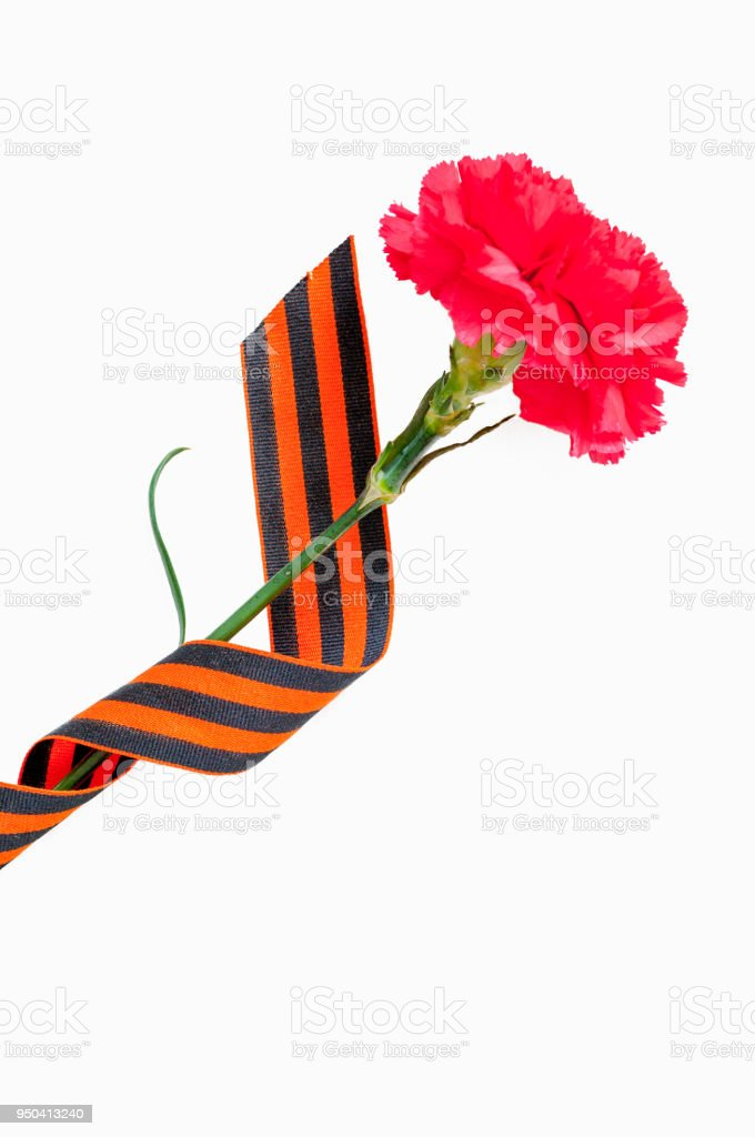 9 May background. Red carnation wrapped in St George ribbon stock photo