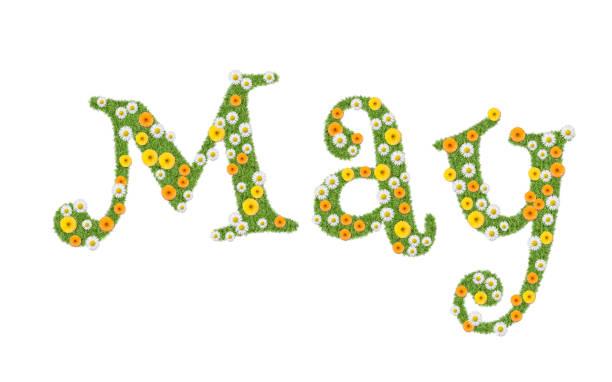 «««maj, månadens namn skriven på blommor, ringblommor och prästkragar. text, word. - maj bildbanksfoton och bilder
