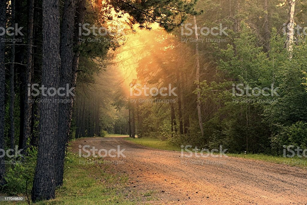 May Promise royalty-free stock photo
