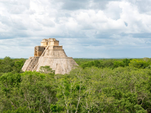 maya templex uxmal in the forest jungle of mexico - uxmal stock photos and pictures