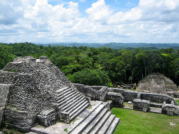 Mayan pyramid and jungle at Caracol stock photo