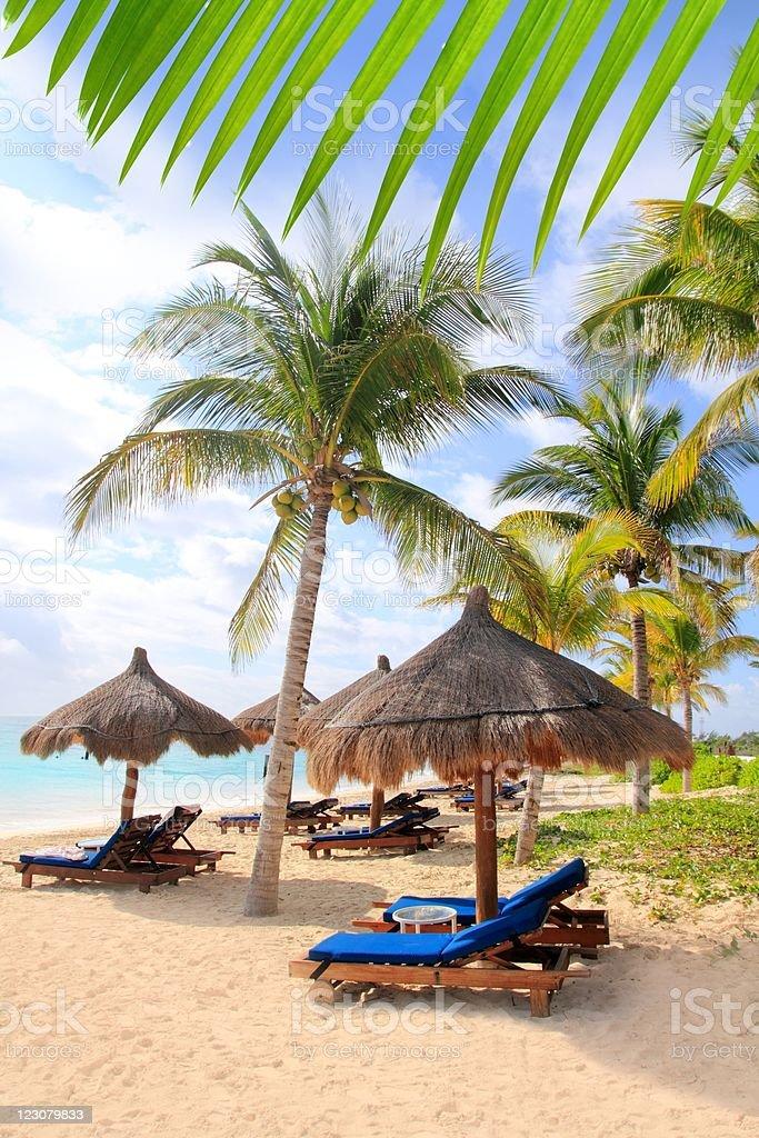 Mayan Riviera beach palm trees sunroof Caribbean stock photo