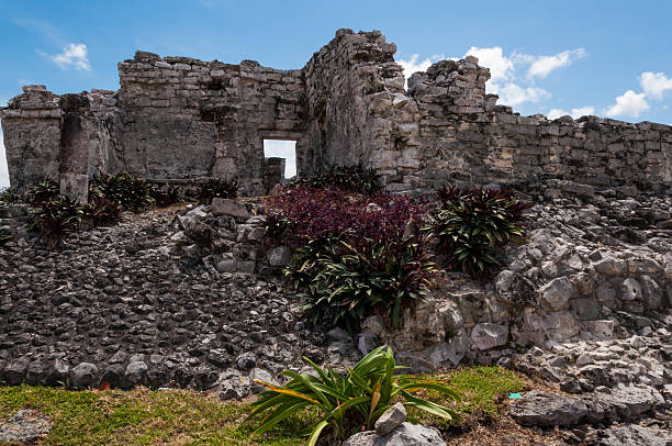 Mayan ruin in Tulum, Yucatan, Mexico. One of the well preserved Mayan sites in Tulum, Mexico on Yucatan Peninsula. Part of the precolumbian Maya walled city, which served as a mayor port. naya rivera stock pictures, royalty-free photos & images