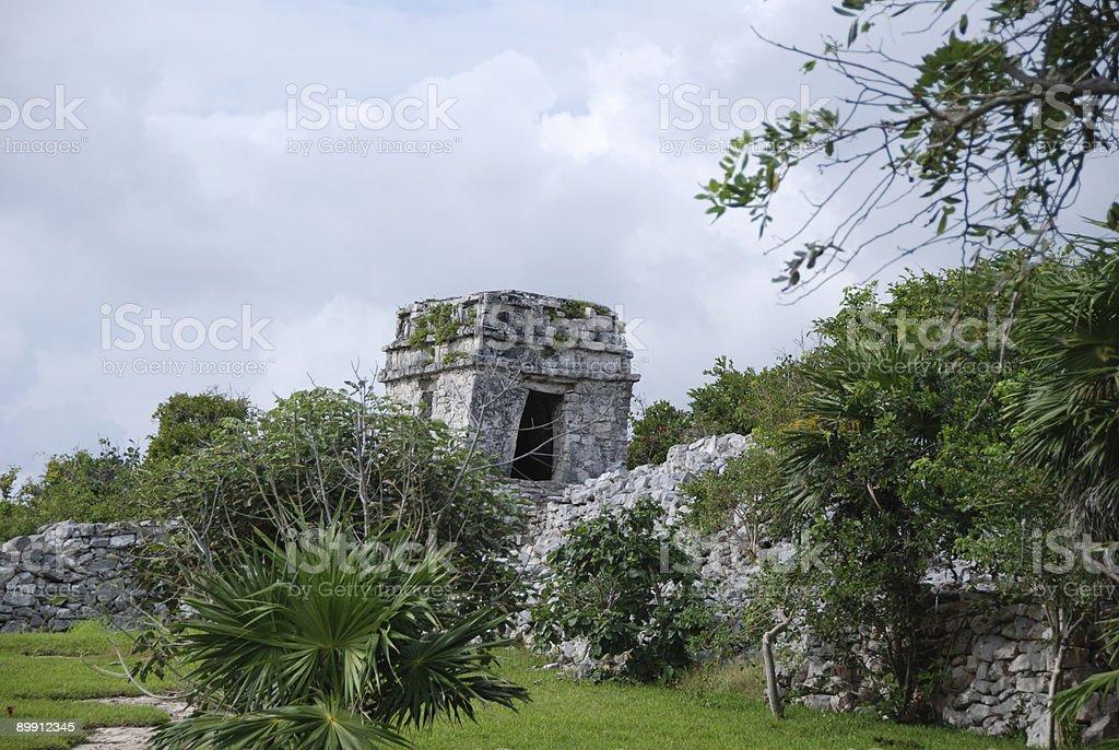 Mayan Ruins with Wall royalty-free stock photo