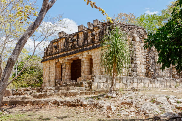 mayan temple at uxmal - uxmal stock photos and pictures