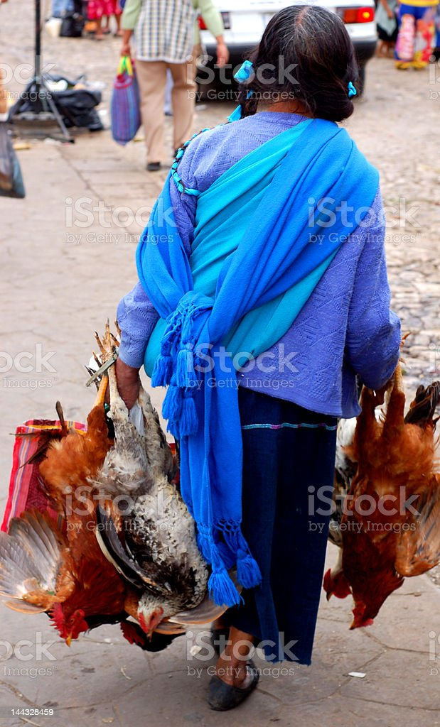 Mayan Woman with Chickens royalty-free stock photo