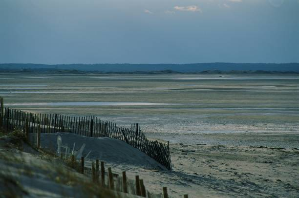 Mayflower Beach, Dennis, MA. stock photo