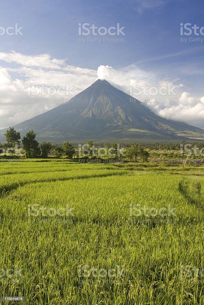Mayon Volcano, Philippines stock photo