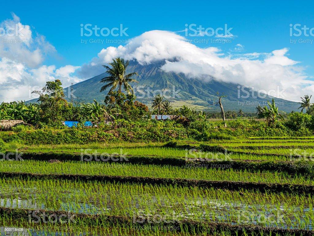Mayon volcano stock photo