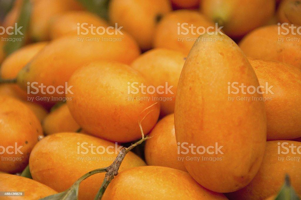 Mayongchid Maprang Marian Plum and Plum Mango at  thailand stock photo