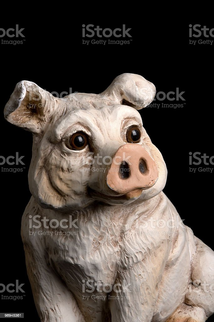Mayor of the Farm royalty-free stock photo