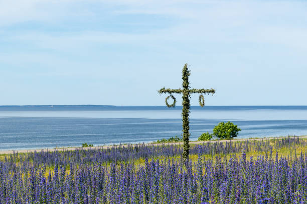 Maypole in a blossom blue field by the coast in Sweden stock photo
