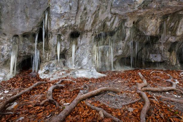 mazarna 동굴입니다. - 벨리카 파트라 뉴스 사진 이미지