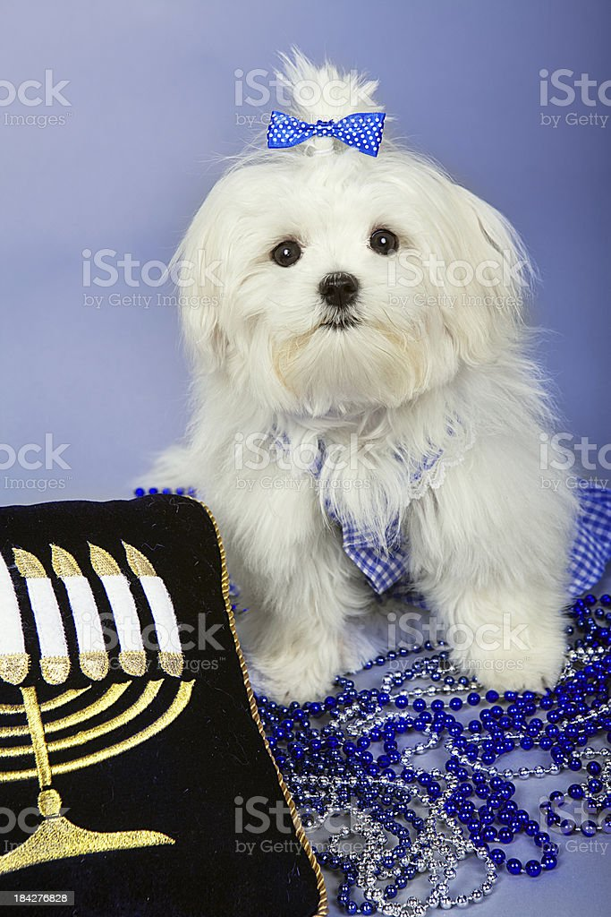 Mazol Tov Jewish Holidays stock photo