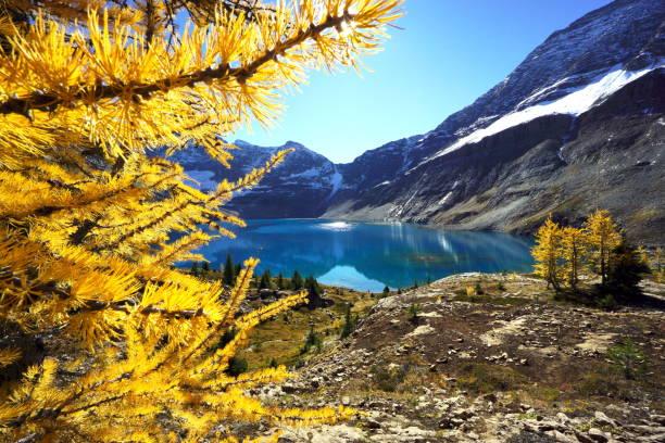 McArthur Lake stock photo
