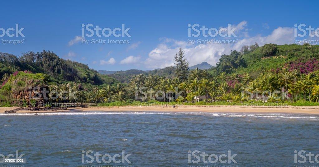 McBryde Gardens on Kauai stock photo