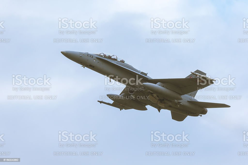 McDonnell Douglas F/A-18 Hornet at NATO Tiger Meet 2014 stock photo