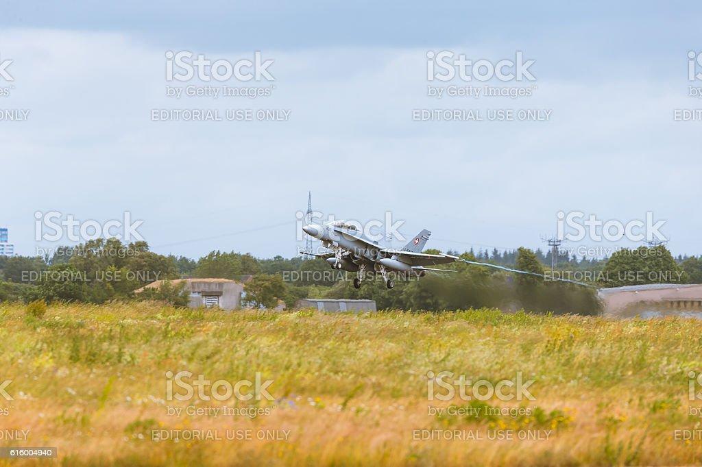 McDonnell Douglas F/A-18 Hornet at NATO Tiger Meet M2014 stock photo