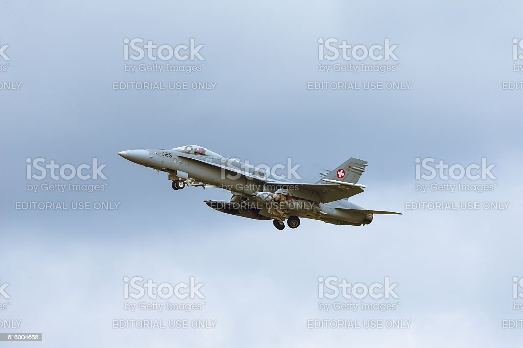 McDonnell Douglas F/A-18 Hornet NATO Tiger Meet M2014 stock photo