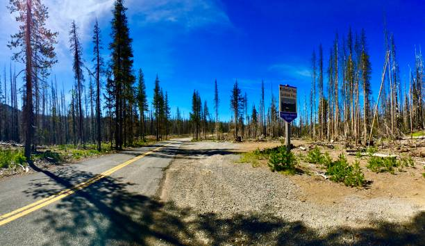 mckenzie pass santiam pass oregon scenic byway sign - panoramic view on a scenic drive - willamette national forest, sisters, or samuel howell stock pictures, royalty-free photos & images