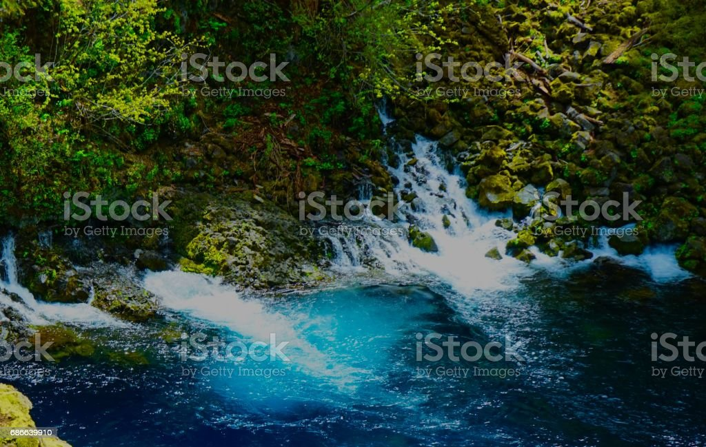 McKenzie River Sacred royalty-free stock photo