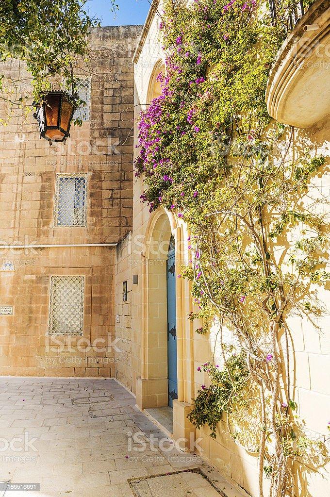 Mdina courtyard with fuchsiaflowers, malta royalty-free stock photo